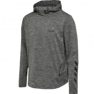 Hooded sweatshirt Hummel hmllaston